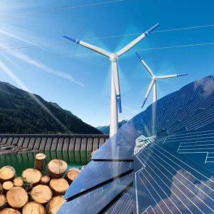 水力発電、バイオマス発電